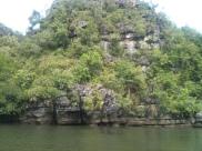 Crocodile Cave Langkawi Mangrove Tour
