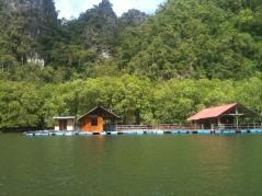 Fishing Village, Langkawi Mangrove Tour