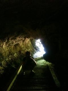Photo in Bat Cave, Langkawi
