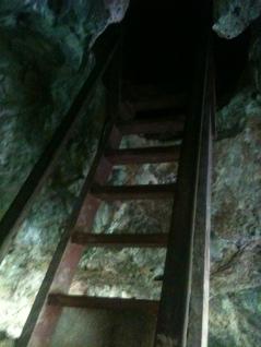 Ladder in Bat Cave, Langkawi