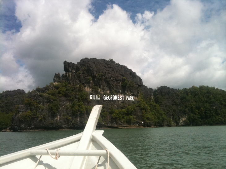 Mangrove Tour at Kilim Geoforest Park, Langkawi