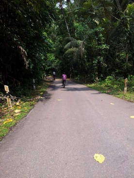 Pulau Ubin Cycling Path