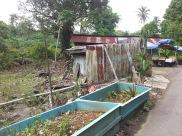 Pulau Ubin shops along the roadside