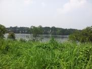 Pulau Ubin Ketam Quarry