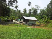 Pulau Ubin Houses