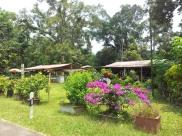 Pulau Ubin Houses 2