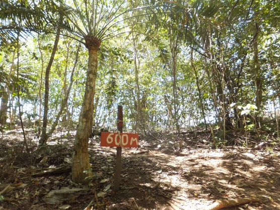 Explore Sabah Day 19: Bohey Dulang, Semporna - 600m Peak of Bohey Dulang