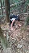 Gunung Lambak 1 day trip hike with Singapore Trekking Group - Scrambling Up