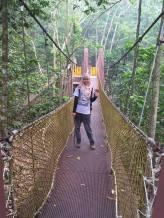 Gunung Lambak 1 day trip hike with Singapore Trekking Group - Mini Bridge in Gunung Lambak