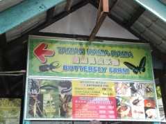 Cameron Highlands Butterfly Farm Ticket Price