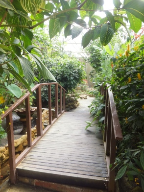 Cameron Highlands Butterfly Farm - Mini Garden Bridge