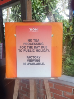 Sungei Palas BOH Tea Centre No Factory Viewing Available