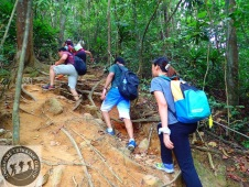 Gunung Lambak 1 day trip hike with Singapore Trekking Group - Getting to Summit