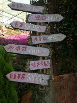 Cameron Lavender Garden - Signboard directions