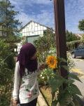 Copthorne Cameron Highlands Hotel Sunflower