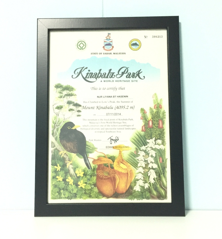 Mount Kinabalu Park Certificate